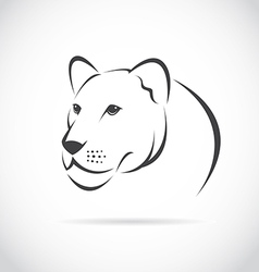 Image of an female lion head vector