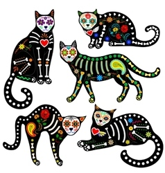 Calavera cats set vector