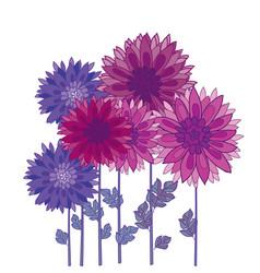 Chrysanthemum flower element autumn aster vector