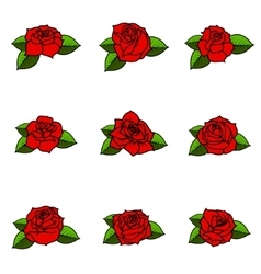 Set of the different roses with leaves isolated on vector
