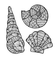 Stylized shell zentangle vector image vector image
