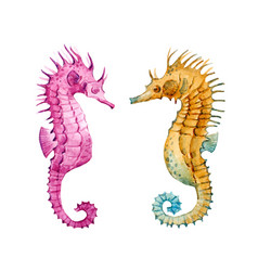 Watercolor sea horse set vector