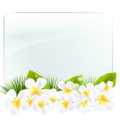 Glass frame with frangipani vector
