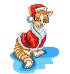 Cat santa claus christmas vector