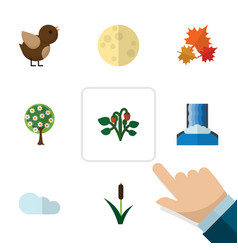 Flat icon ecology set of cattail bird lunar and vector
