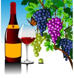 new wine vector image vector image