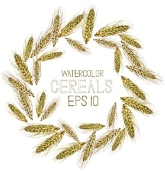 Watercolor cereal wreath vector image vector image