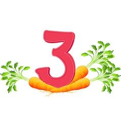 Three carrots vector image