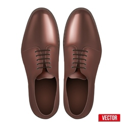 Male fashion classic brown shoes vector