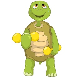 Funny Turtle Gym vector image