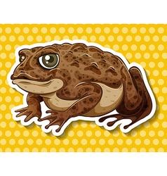 Brown frog vector image vector image