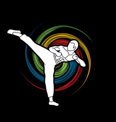 Kung fu karate kick vector