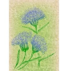 Cornflowers on grunge texture vector image