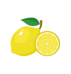 lemon yellow on a white vector image