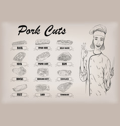 Pork pig carcass cut parts info graphics scheme vector