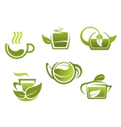 Green tea symbols set vector image