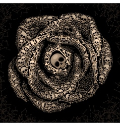 Rose of skulls and bones vector