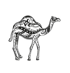 Ethnic ornamented camel vector