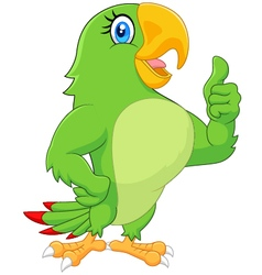 Cartoon parrot giving thumb up vector
