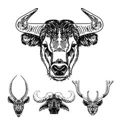 set of hand drawn animal Sketch vector image vector image