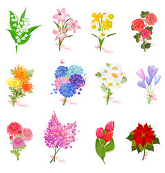 fashion collection with elegant bouquets of lovely vector image