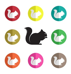 Group of squirrel vector