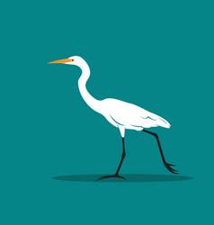 Heron or egret design ciconiiformes ardeidae on vector