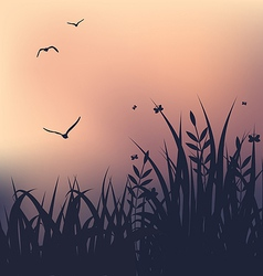 Sunset with grass and flying seagulls vector image