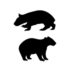 Wombat silhouettes vector