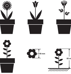 Flowers in pots and flower size scheme vector