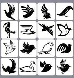 bird icons set vector image