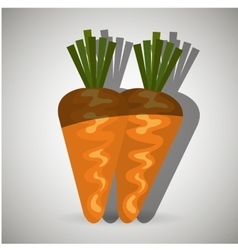 Fresh vegetables design vector