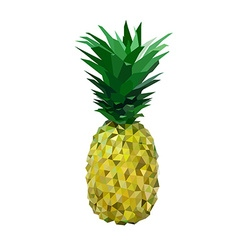 Low polygon yelllow pineapple vector