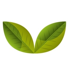 Green leaves or leaf ecology theme vector