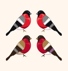 Bird bullfinch set vector