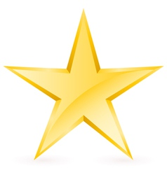 Shiny gold star vector
