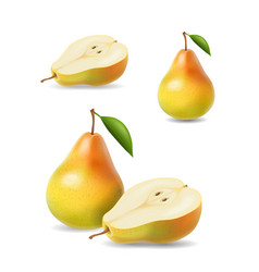 sliced yellow pears with leaf vector image vector image