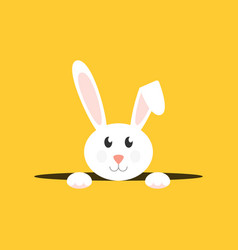 white easter bunny vector image