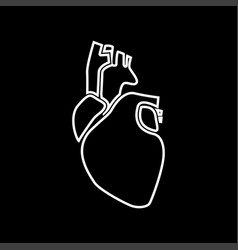 human heart white color icon vector image vector image
