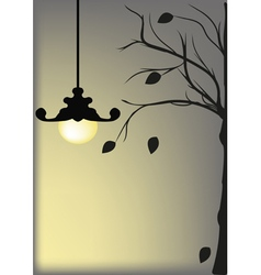 Lamp agsinst a night sky vector