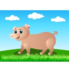 pig in the wild vector image