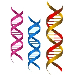 Dna elements vector