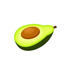 half of avocado fruit cartoon vector image