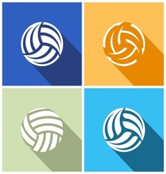 Volleyball balls vector image