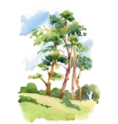 Watercolor natural summer wood landscape vector