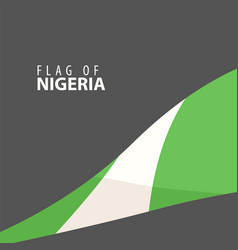 flag of nigeria against dark background vector image vector image