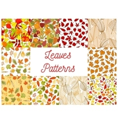 Autumn fallen leaves seamless patterns set vector