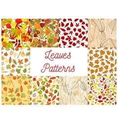 Autumn fallen leaves seamless patterns set vector