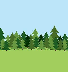 Seamless Pine Forest Summer vector image
