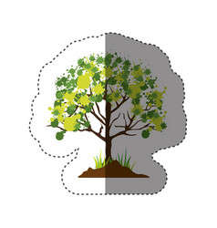 Sticker colorful silhouette with leafy tree vector